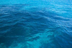 """Fiumicino, """"Fishing for Litter"""": un mare più pulito e libero dalle plastiche"""