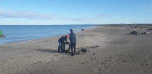 Fiumicino, Spiaggia di Coccia di Morto: pulizia straordinaria