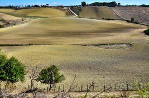 Fiumicino, Pizzo del Prete: un bene paesaggistico