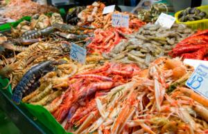 Fiumicino, Gara per i posteggi del mercato ittico: disponibile il bando
