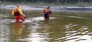Fiumicino, Laghetto di Villa Guglielmi: volpe salvata dai sommozzatori