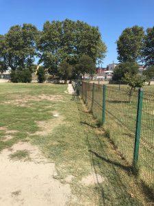 Fiumicino, Area cani di Villa Giglielmi: l'intervento del Comune