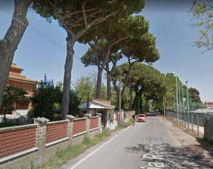 Fiumicino, Potature su via Redipuglia