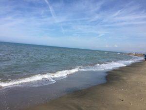 Fiumicino, Impianto di filtraggio delle acque: approvata la delibera di accordo con le società Ares e Ala e con Regione Lazio