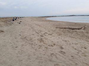 Fiumicino, Area della Riserva Statale del Litorale: in corso la pulizia straordinaria delle spiagge