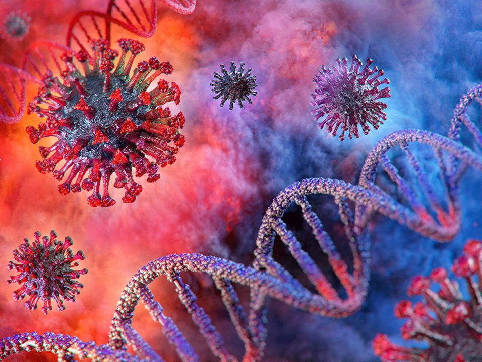 Fiumicino, Coronavirus: i dati aggiornati